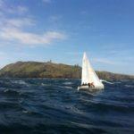Albert Penguin, Round the Island 2013 winner